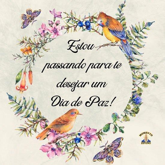 Dia de Paz