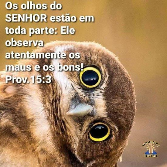 Provérbios 15.3