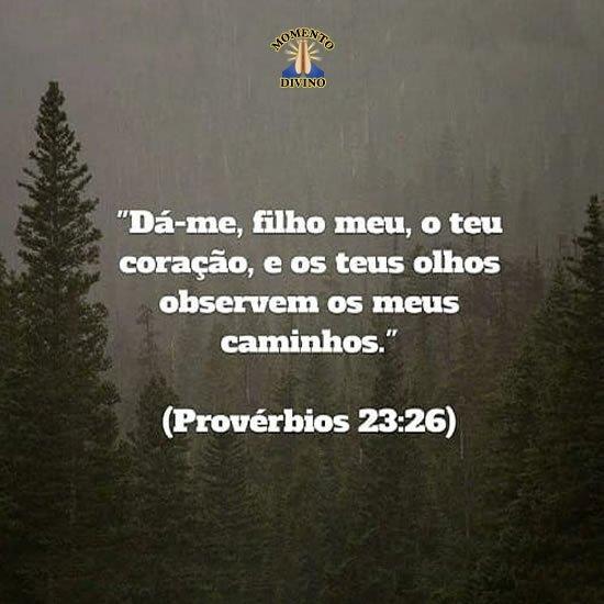Provérbios 23.26