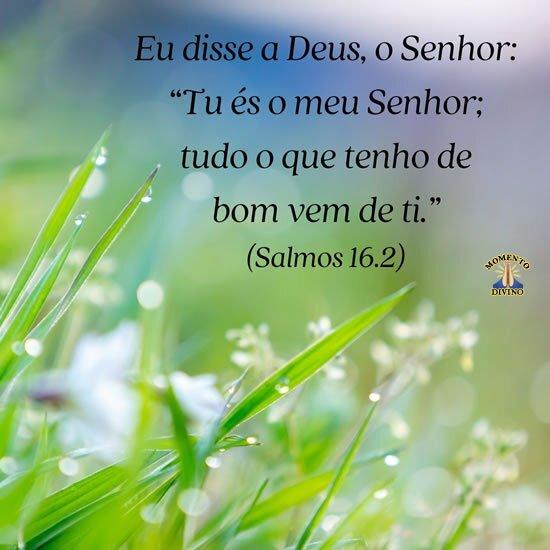 Salmos 16.2