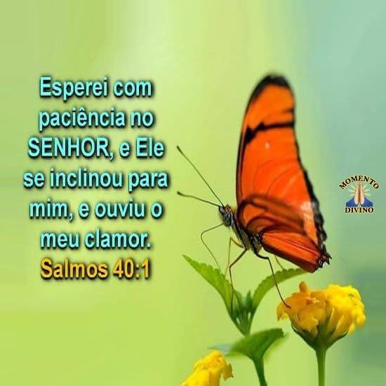 Salmos 40.1