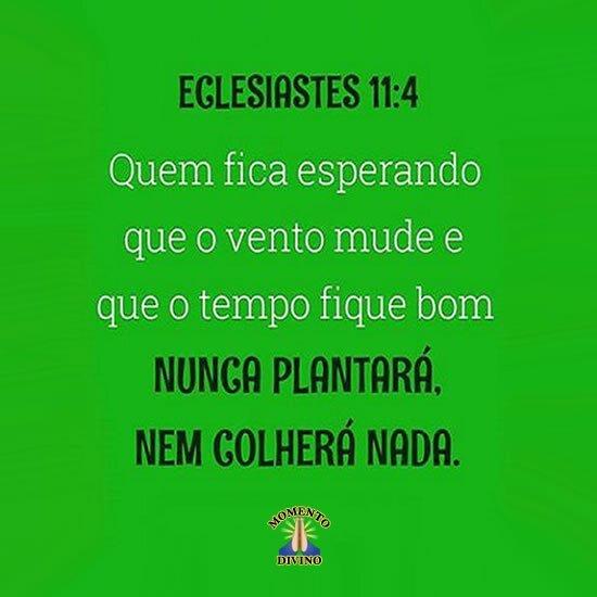 Eclesiastes 11.4
