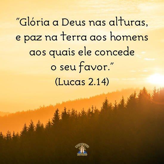 Lucas 2.14