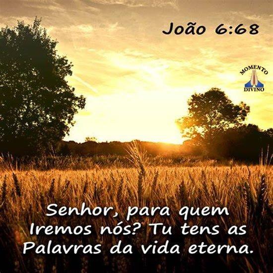 Palavras da vida eterna