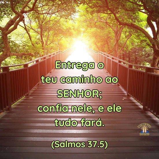 Entrega o teu caminho ao Senhor