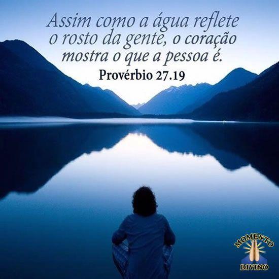 Provérbio 27.19