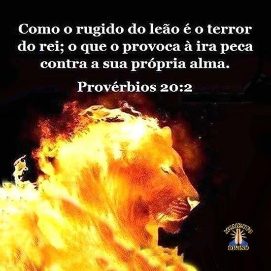 Provérbios 20:2