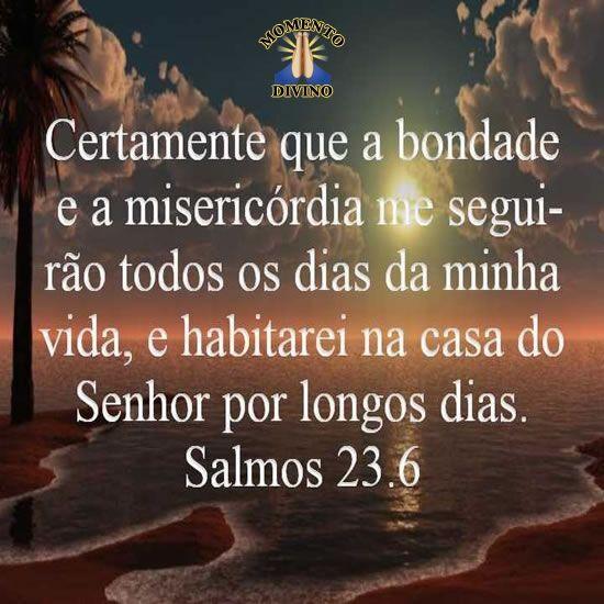 Salmos 23.6