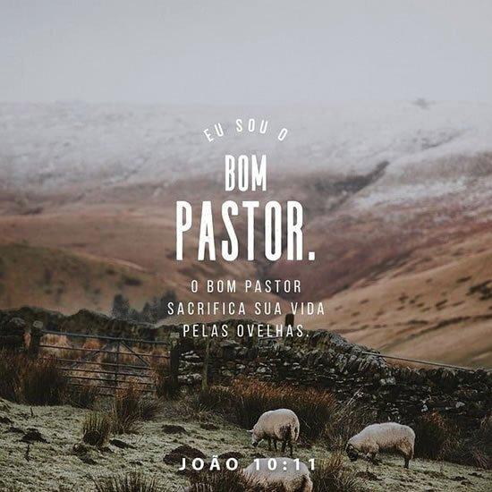 João 10.11