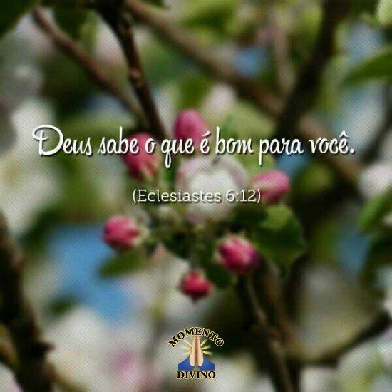 Eclesiastes 6.12
