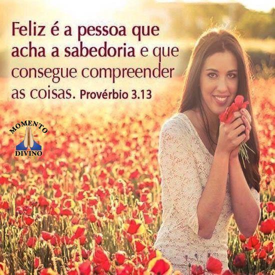 Provérbio 3.13