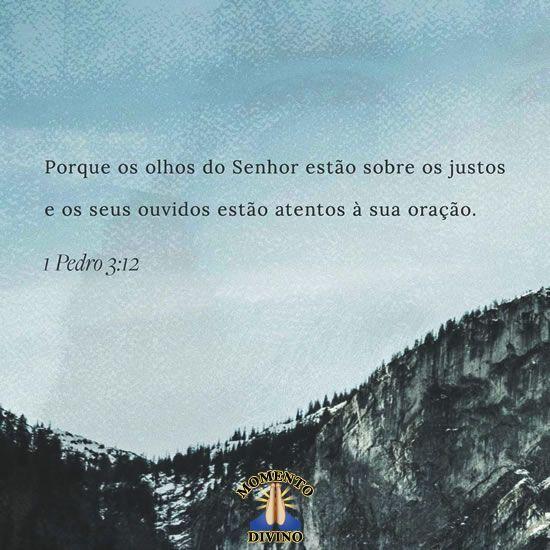 Pedro 3.12