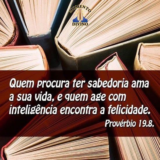 Provérbio 19.8