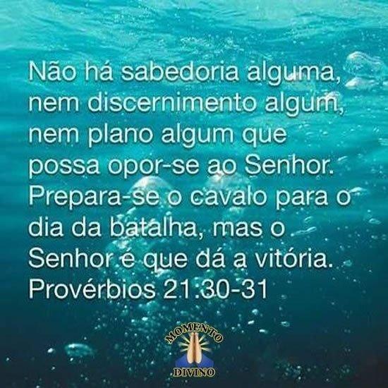 Provérbios 21.30
