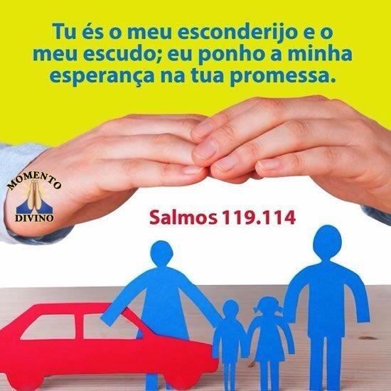 Salmo 119.114