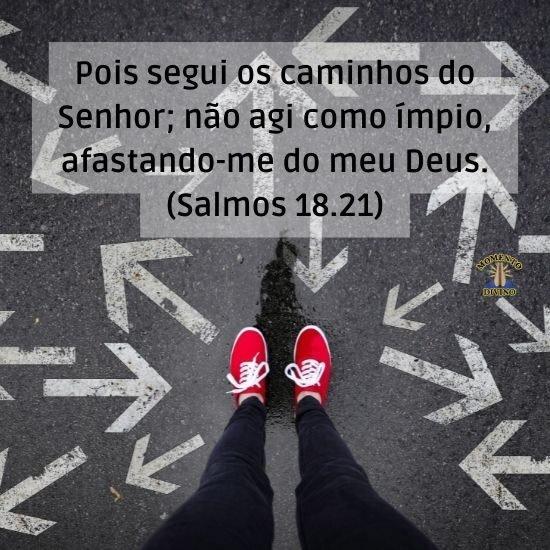 Salmo 18.21