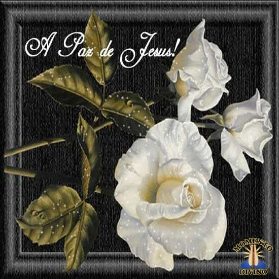 A paz de Jesus