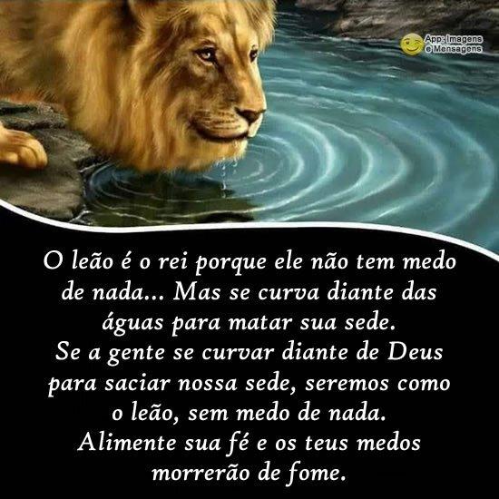 Seja como o leão