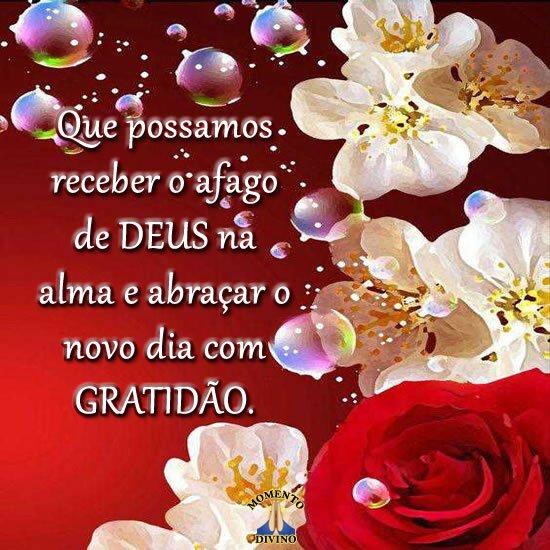 Abraçar o novo dia com gratidão