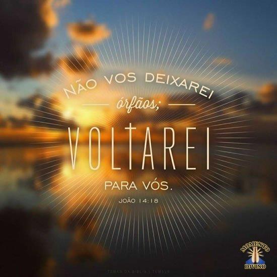 João 14:18