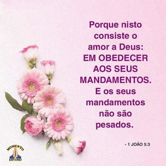 João 5.3