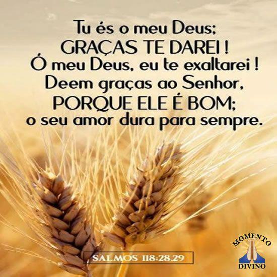 Salmos 118
