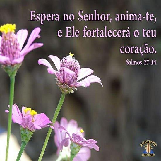 Salmos 27.14