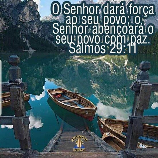 Salmos 29.11