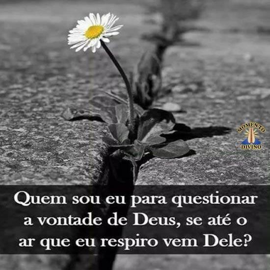Questionar a vontade de Deus