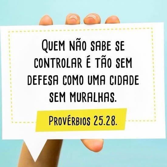 Provérbios 25.28