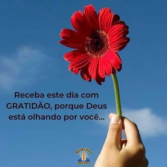 Receba o dia com gratidão