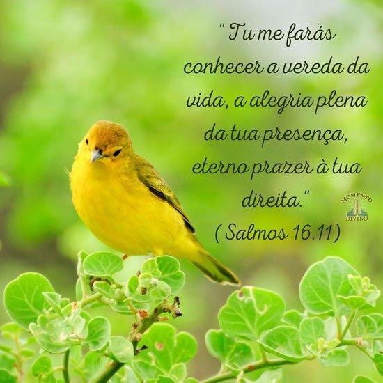 Salmo 16.11