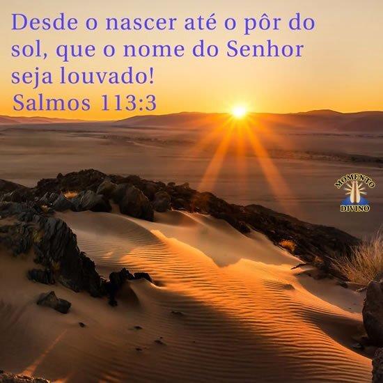 Salmos 113.3