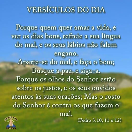 Versículos do dia